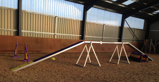 competition agility equipment